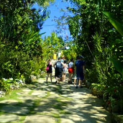 Eco tours, enjoy authentic Jamaica